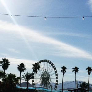 Silhouette of palm tree and ferris wheel at the Coachella Music Festival with San Jacinto mountains in background.