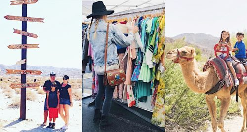 Header image with preview images of camel, vintage shopping, and jeep tours